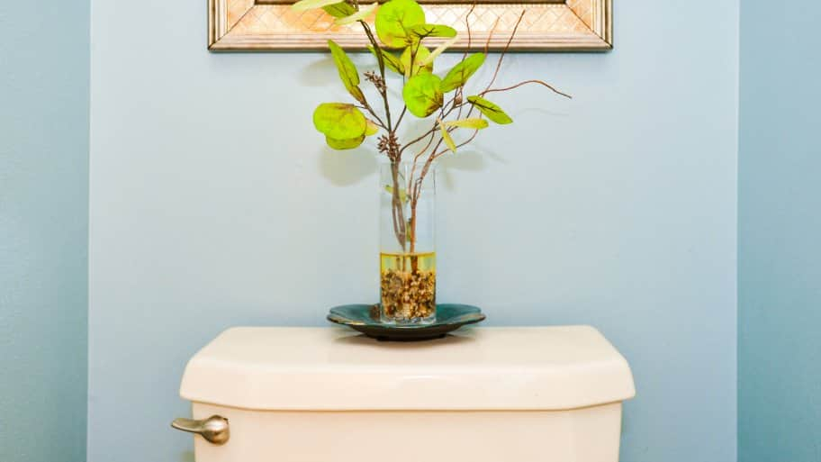 Outstanding Clean Toilet Tank With Vinegar And Baking Soda Ideas ...