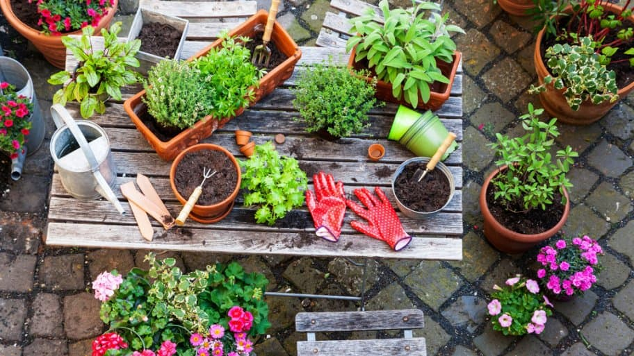 A Wood Table Being Used By Gardener With Plants And Tools Part 61