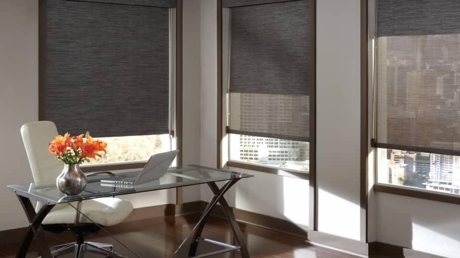 Solar Screen Window Treatments In Office