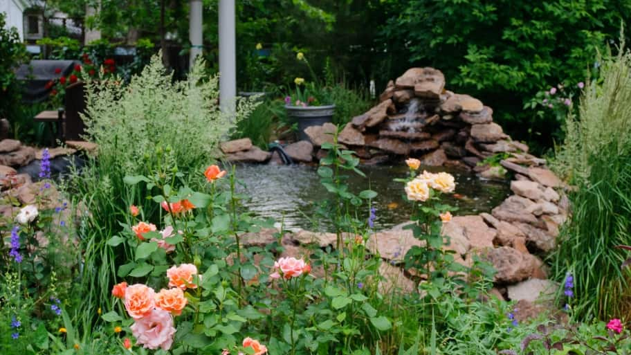 How to Make a Backyard Pond Safer | Angie's List