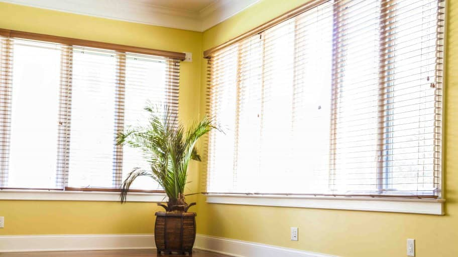 Windows with blinds in room (Photo by Photo by Katelin Kinney  )