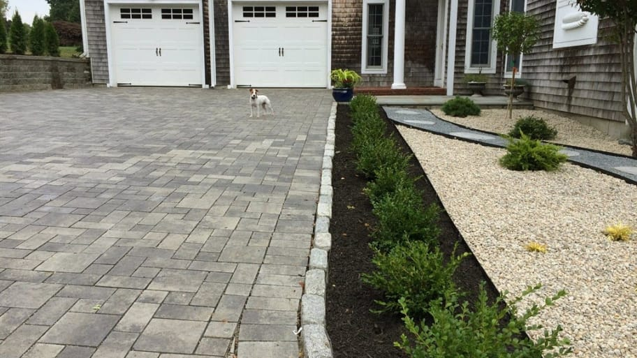paver driveway and puppy