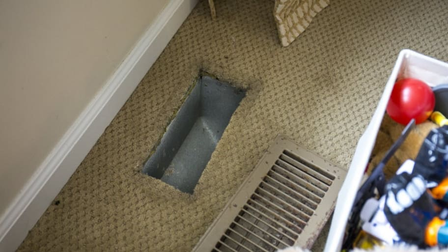 Pet Dander Can Build Up In Air Ducts Angie S List