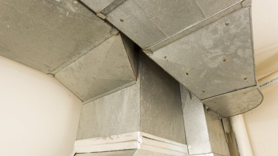Black Mold Around Ceiling Vents Nice Houzz