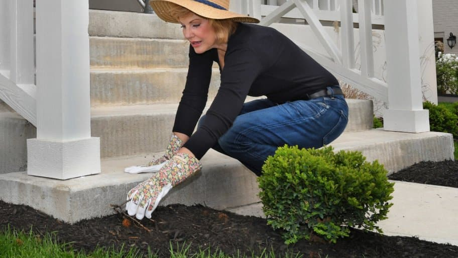 Types Of Mulch For Your Landscape Angie S List