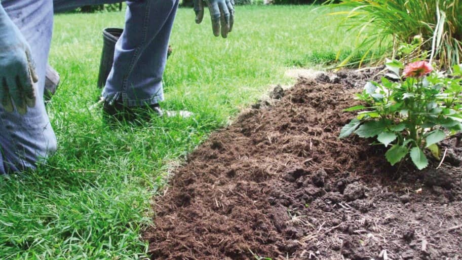 How To Make Your Own Mulch