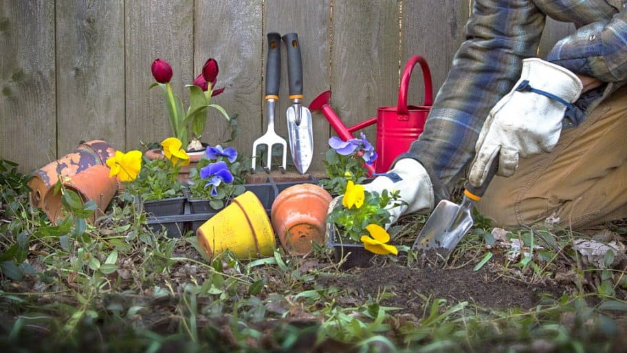 best times for garden maintenance - Garden Mainenance