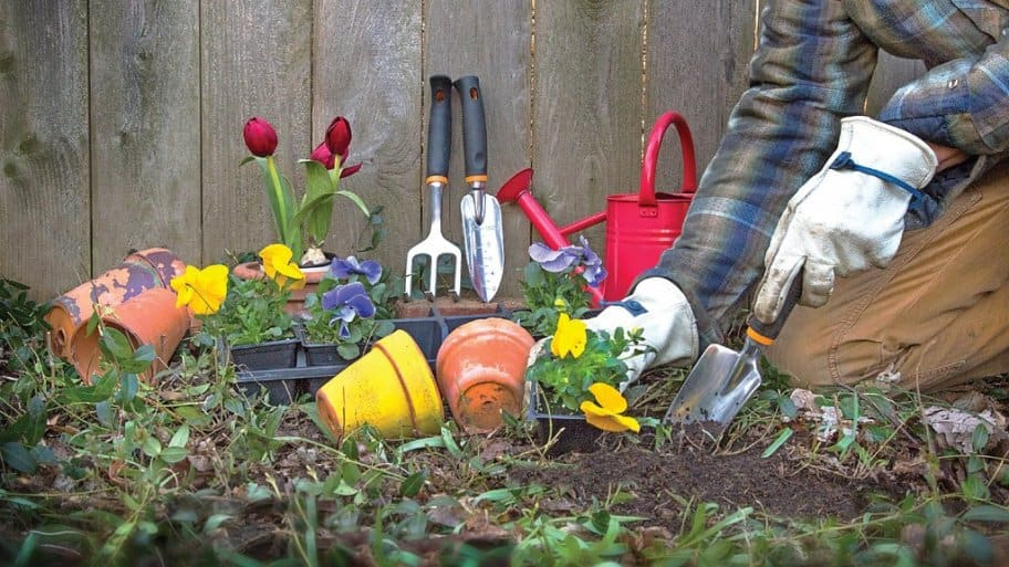 Whenu0027s The Best Time To Plant? Flower Pots, Pansies, Garden Tools