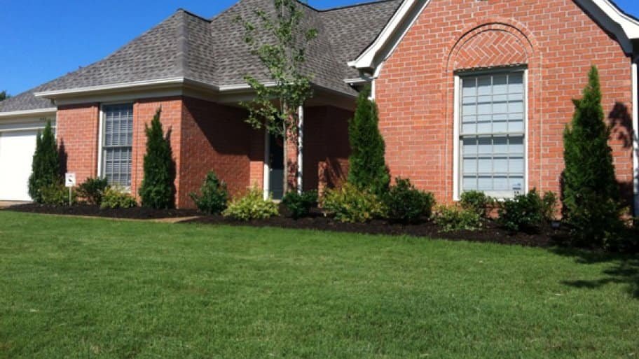 Never remove more than one-third of the height of the grass in one clipping. It can shock the grass, making it more susceptible to disease, says Utendorf. (Photo courtesy of Angie's List member Rachel F. of Memphis, Tenn.)