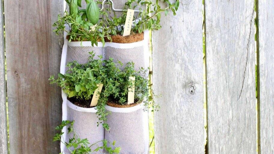 Diy Vertical Herb Garden Angie S List
