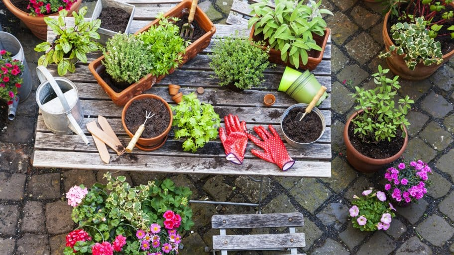 Wonderful Growing A Garden At Home Is An Activity That The Entire Family Can  Participate In, And It Provides A Household With A Wealth Of Benefits.
