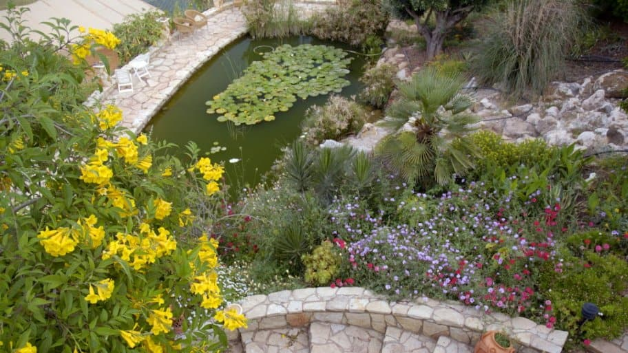 Aerial shot of a rocky garden with stairs, pond and flowers in summer.