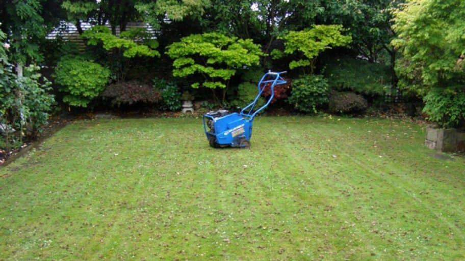 4 Tips For Core Aeration Of Your Lawn Angie S List