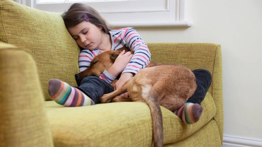 Sick dog and child