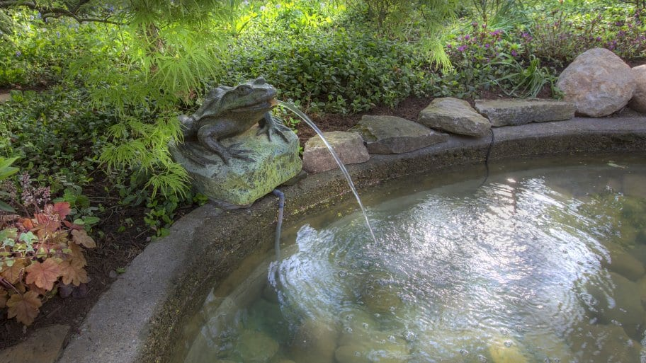 Add a pond for a beautiful water feature in your landscaping. (Photo by Frank Espich)
