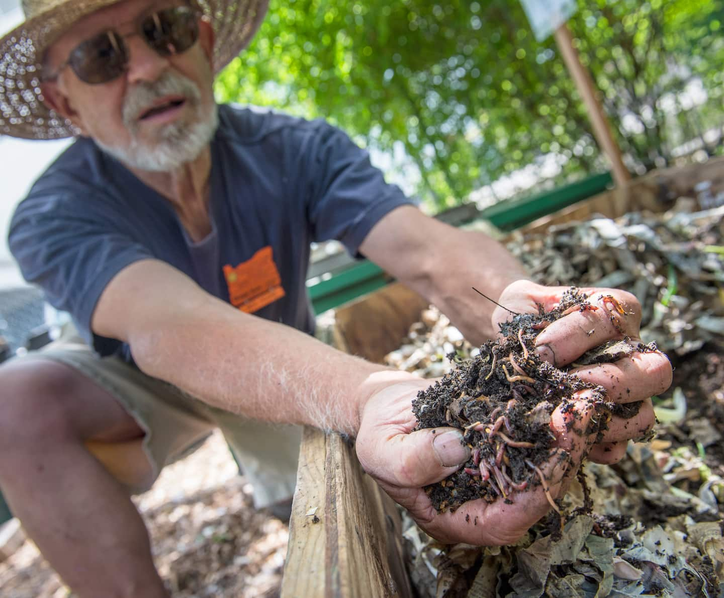 How To Make Compost Using Worms Angies List Mesin Las Hbvcut 60 3 Phase