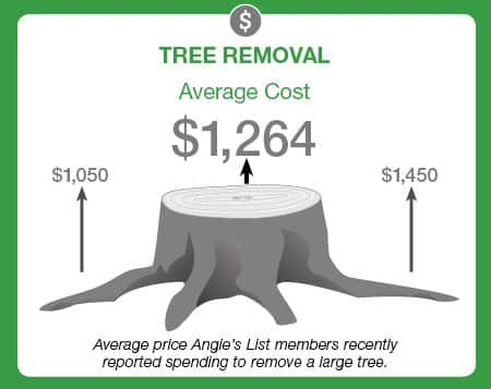 how much does it cost to hire a tree service angie 39 s list. Black Bedroom Furniture Sets. Home Design Ideas