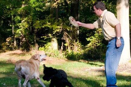 D.C.-area dog trainer