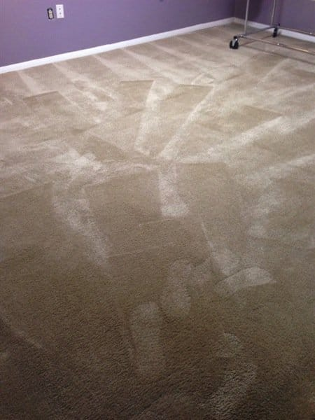 KC Carpet & Upholstery Cleaners made Renee L.'s carpets look like new. (Photo courtesy of Renee L.)