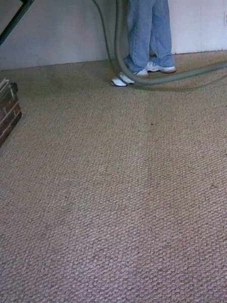 St. Louis members praise the work of local carpet cleaners. (Photo courtesy of Angie's List member Ellen W. of St. Louis)