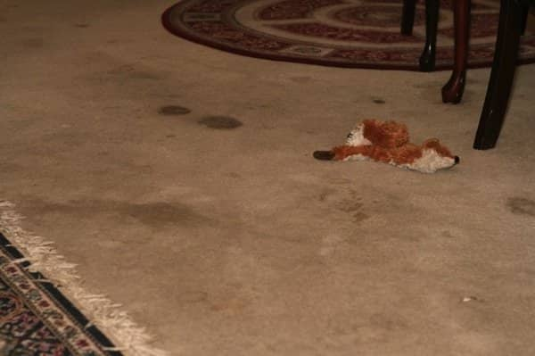 Carpet cleaning removed these pet stains making the carpet cleaner than when the owners moved in. (Photo courtesy of Mary R.)