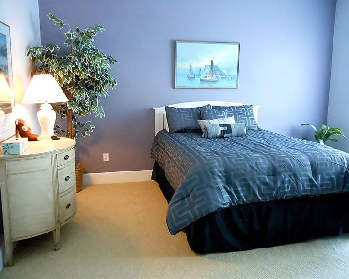 bedroom with interior painted accent wall