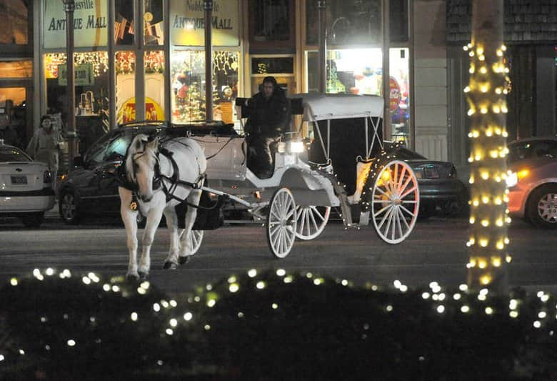 horse-driven carriage ride