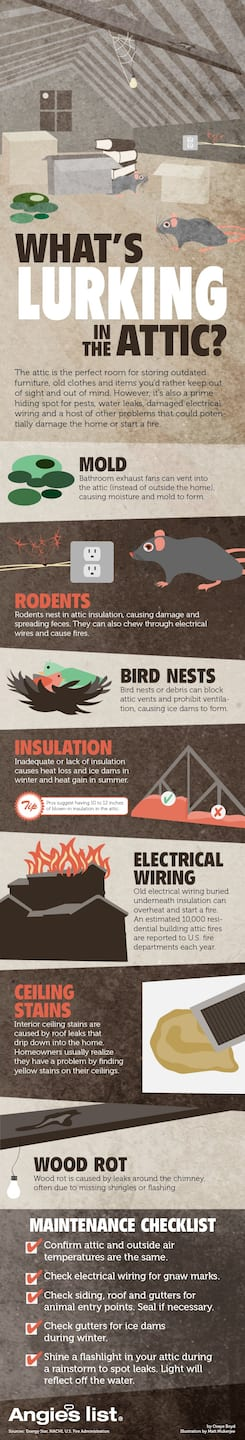 Infographic Do You Know Whats Lurking In Your Attic Angies List Home Wiring Through Mice Rats Electrical Fires Blocked Ventilation Faulty Insulation Mold Rot