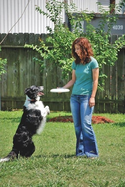 Houston's Best Pet Sitters employee Suzanne Minter plays with Izzy, a border collie. (Photo courtesy of Melanie Whitman)