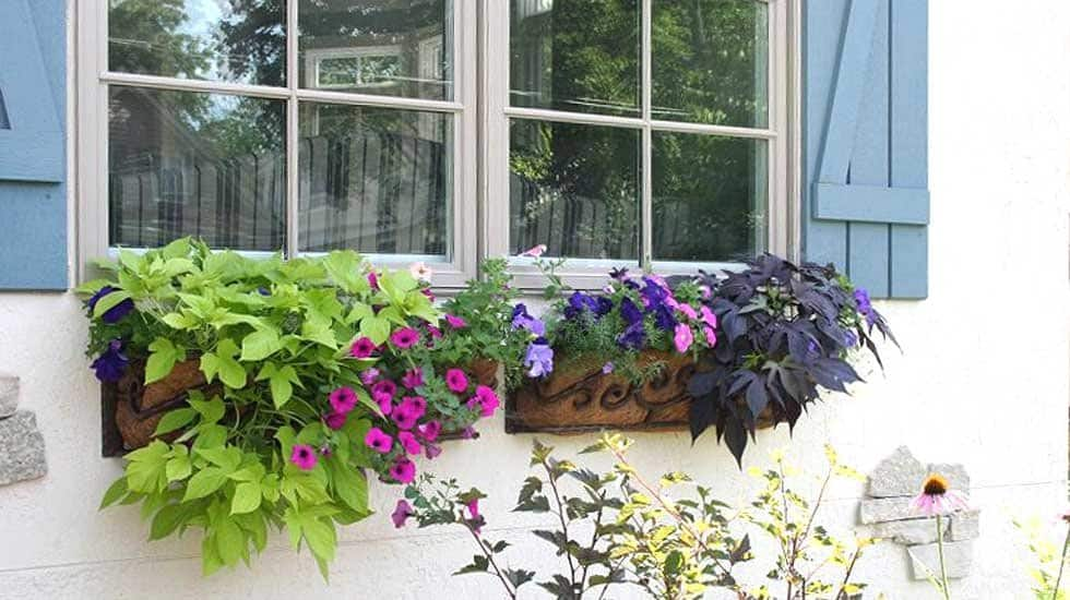 wrought iron window flower boxes