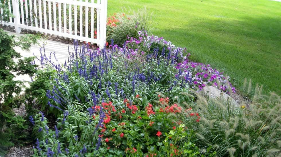 front-yard landscape with colors and textures