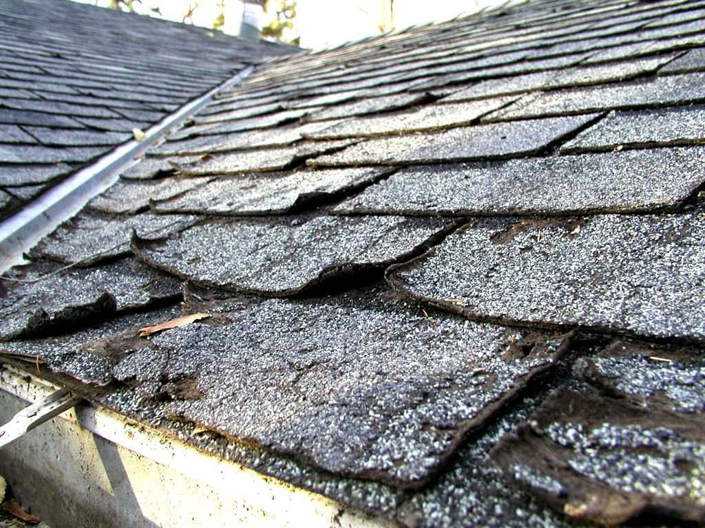 Monitor the condition of your roof to prevent leakage. (Photo courtesy of Janet Campbell)