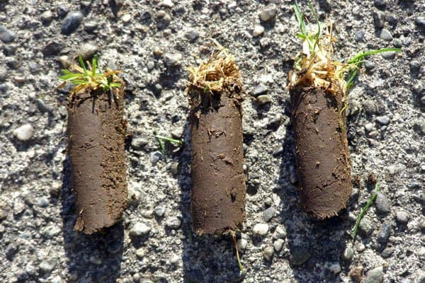 Aeration removes plugs of soil like these to improve airflow to grass roots. (Photo courtesy of Stewart Armour)