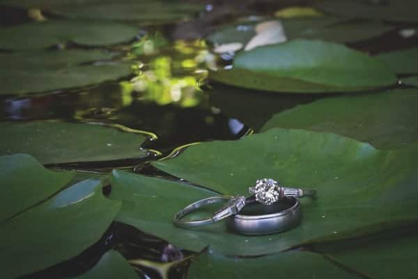 Photographer Lou Andria was taking this shot when the bride's ring fell into the pond.  Andria when right in after it.  (Submitted by Melissa Britt of Chandler, AZ).