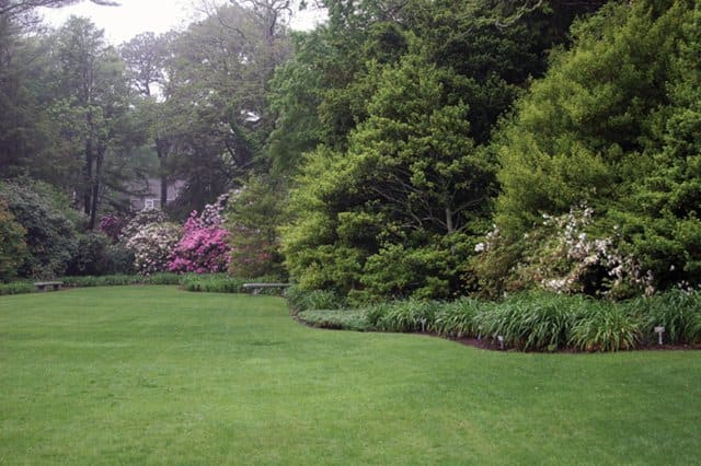Photo courtesy of C.L. Fornari | From Boston to Washington, D.C., lawns featuring a blend of several types of fescues tend to green up the fastest in the spring and are also able to withstand summer heat.