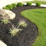 front yard landscape with black mulch