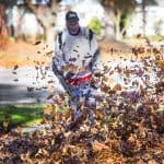 landscaper blowing pile of leaves with leaf blower