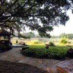 backyard view of pond