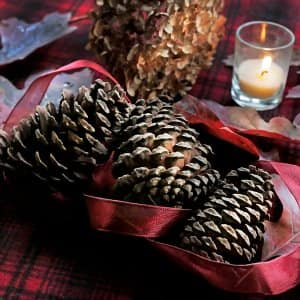 Pine cones, dried flowers, ribbon and a candle on wool blanket