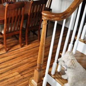 Bamboo flooring can add panache to your dining room. (Photo courtesy of Angie's List member John M. of Virginian Beach, Va.)
