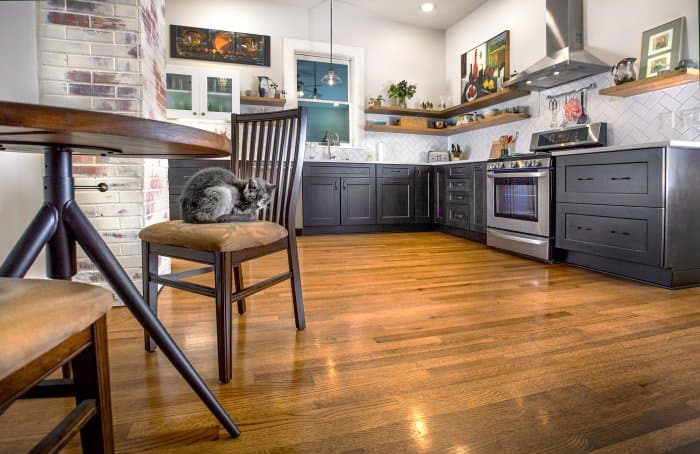newly remodeled kitchen and cat