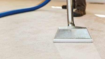 how to get rid of mold after water damage