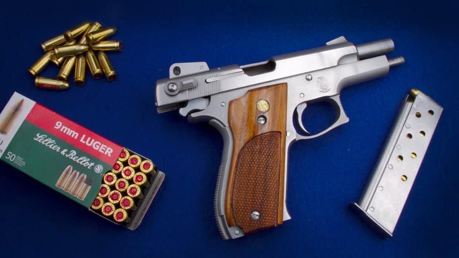 luger handgun with bullet ammunition and magazine