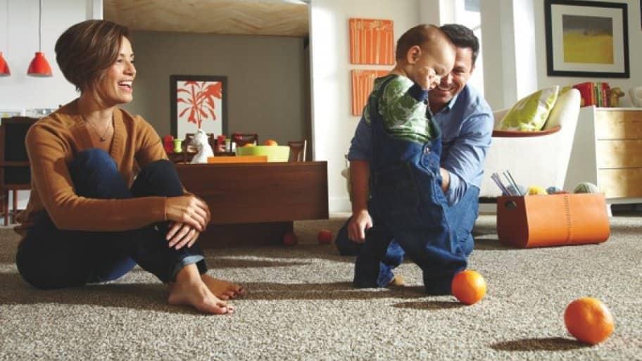 Tips for Picking the Best Carpet for