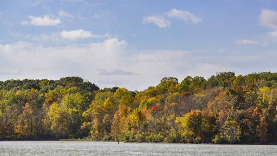 fall trees at Eagle Creek Park