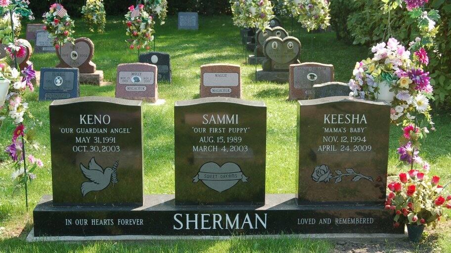 Gravestones at pet cemetery