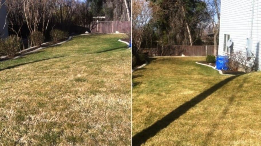 best time to dethatch lawn Part - 16:  best time to dethatch lawn awesome ideas
