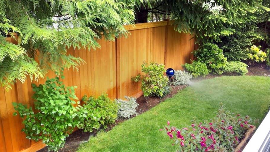 A Cedar Fence
