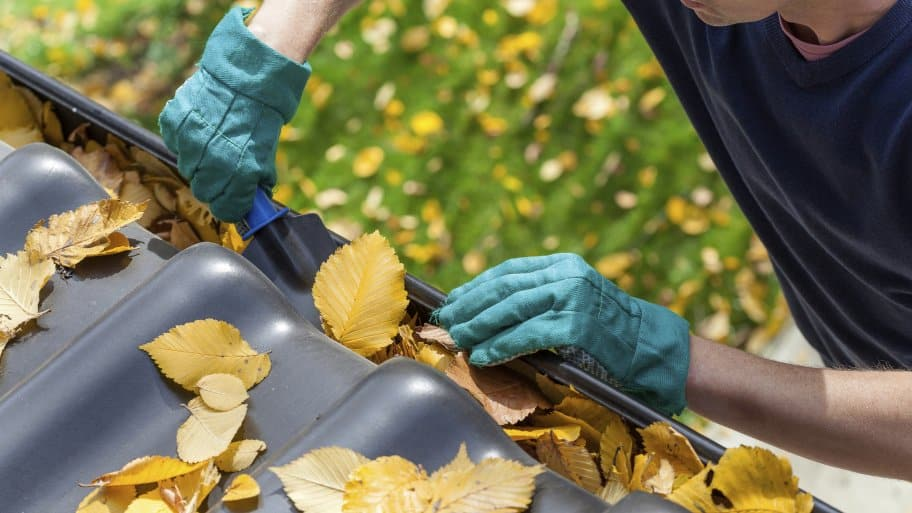How much does gutter cleaning cost angies list cleaning gutters solutioingenieria Images