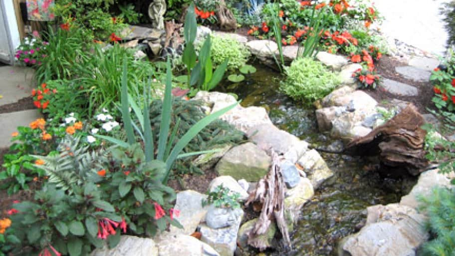 colorful backyard pond with water feature